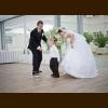 Svadba manželia Fulieroví